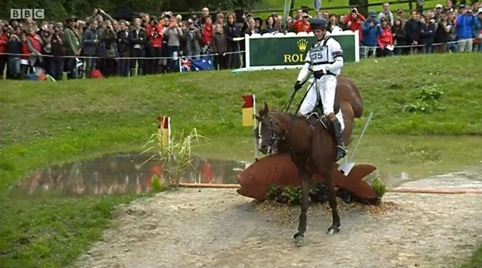 WEG - William and Chilli's cross country result