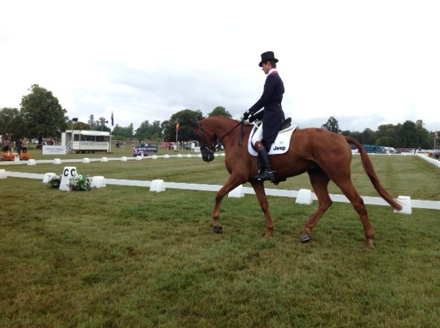 Blenheim Day 1