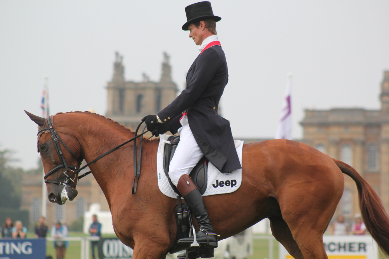 Blenheim - Dressage update from William