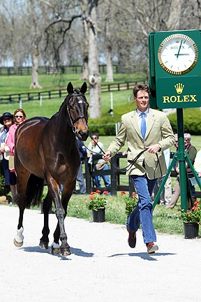 Rolex - horse inspections